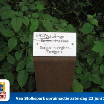 Hanzestad_Hasselt_Van_Stolkspark_23_juni_2018_(07)